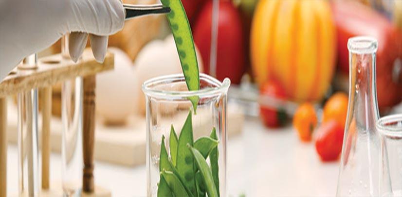 Χημική ανάλυση Ανάλυση θρεπτικών συστατικών aliment lab