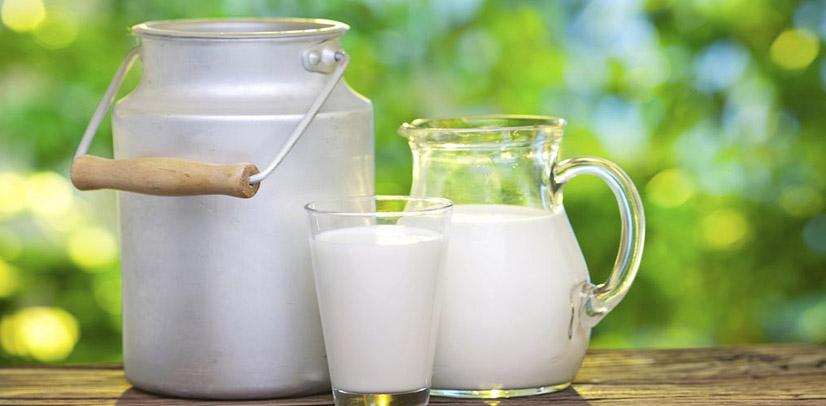 aliment lab γάλα